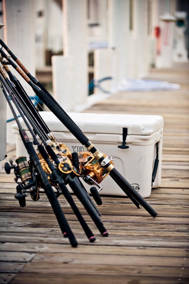 El proyecto la pesca para los vídeos primerizos