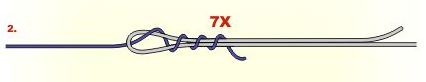 El nudo Alberto, perfecto para unir dos líneas de pesca facil Espesca (2)