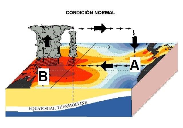 Meteorología avanzada para pescadores, Efectos de El Niño sobre la pesca - Todo para la pesca
