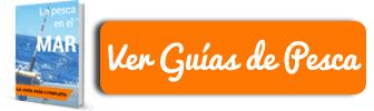 Banner Cabecera Guias de Pesca Movil