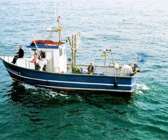 Barcos de pesca de bajura