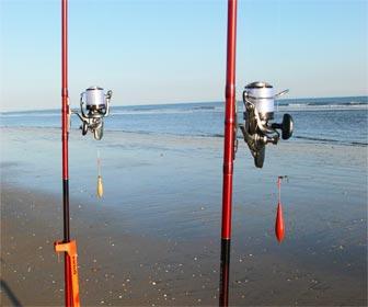 Caña carrete pesca doradas en playa