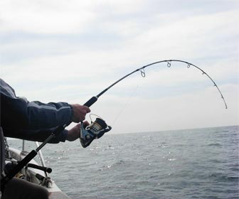 Caña de pesca fondeada