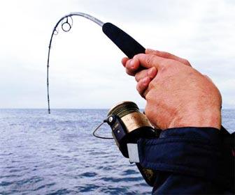 Caña de pesca muy flexible