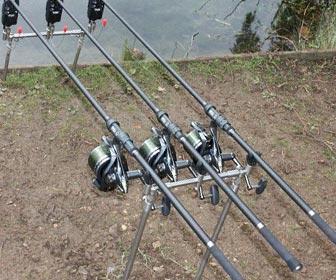Cañas de pescar para carpas