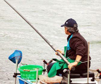Cañas enchufable pesca al coup