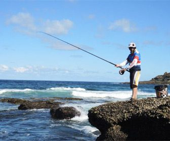 Cañas pesca rockfishing