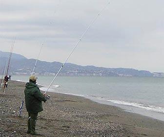 Como pescar lisas al surfcasting