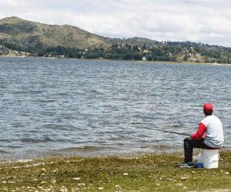 Como pescar pejerreyes en mar