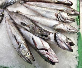 Consumo responsable para frenar la sobrepesca