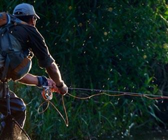 Pesca conmosca