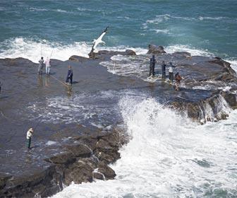 Espigones pesca rockfishing