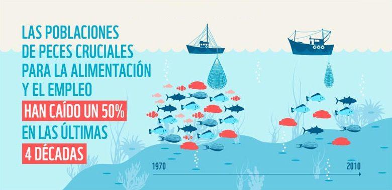 Infografia sobre estadisticas de explotacion pesquera