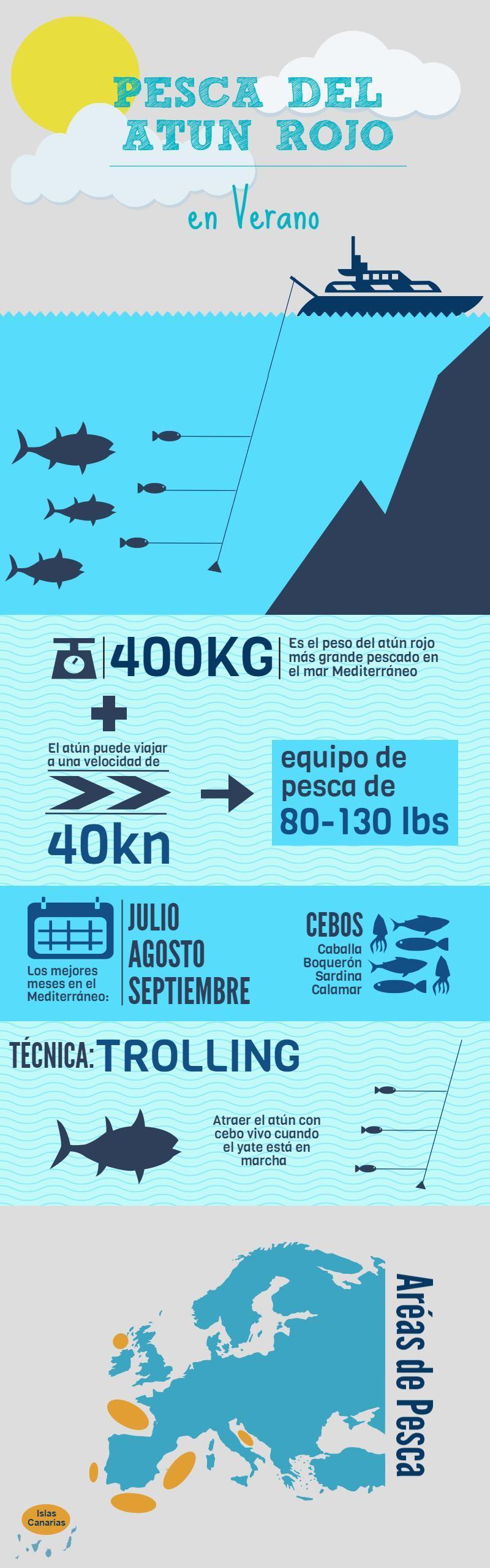 Infografia temporada pesca del atún rojo