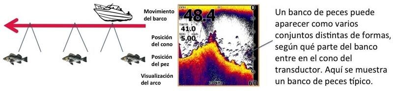 Interpretar bancos de peces con sondas de pesca