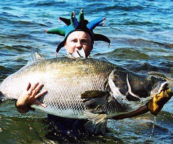 La pesca de carpas