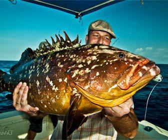 La pesca del mero trucos y consejos