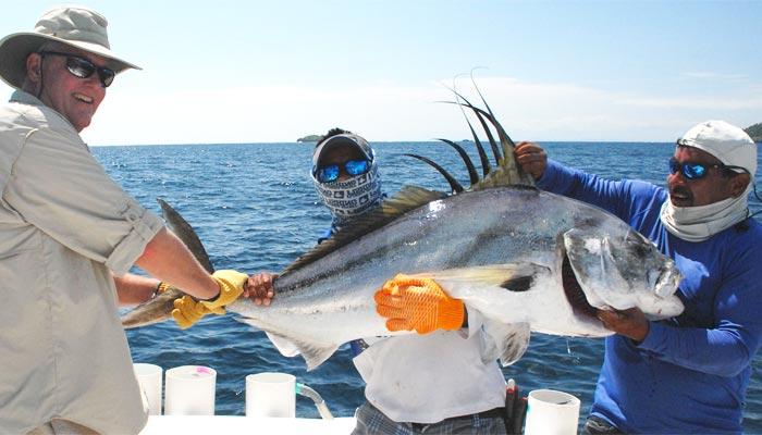 La pesca en alta mar grandes depredadores