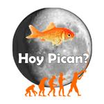 Logo APP Hoy Pican