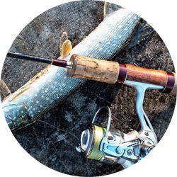 Muchos cosas más de pesca