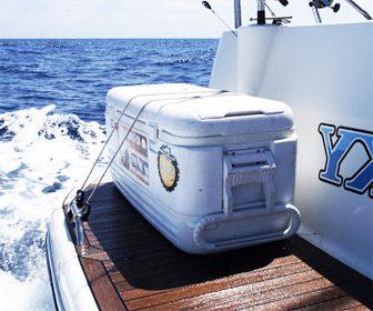 Neveras para pescar en barco