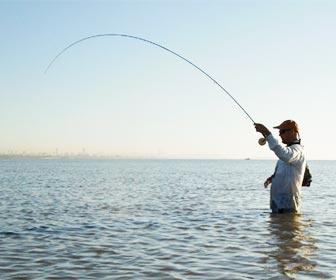 Pesca a spinning en mar