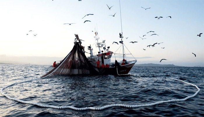 Resultado de imagen para Pesca Al Cerco