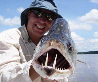 Pesca de payara en Venezuela