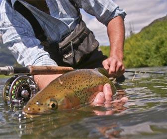 Pesca deportiva sin muerte captura y suelta