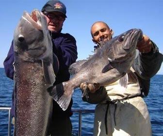 Pesca en el mar grandes capturas