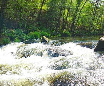 Pesca en rios con corrientes