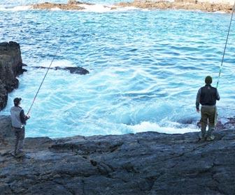 Pesca lubinas desde roca
