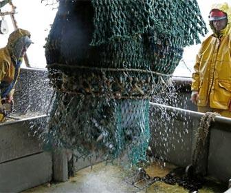 Pescadores faenando en alta mar