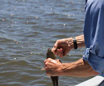 Pescando con hilo fluorocarbono invisible