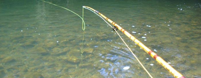 Pescar con cañas de bambú