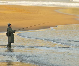 Pescar lobinas desde costa