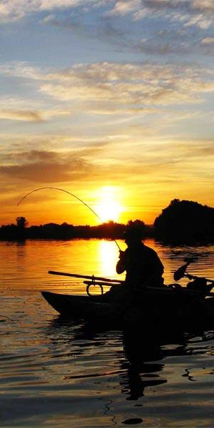 Pescar lubinas por la noche