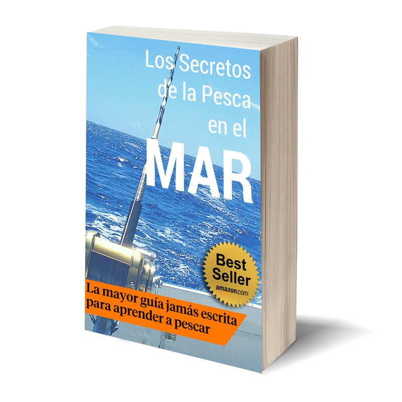Ebook los secretos de la pesca en el mar