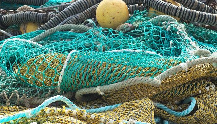 Redes De Pesca Descubre Todos Los Tipos Y Usos Espesca