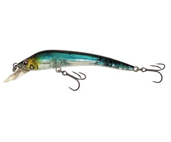 Sèbile Koolie Minnow