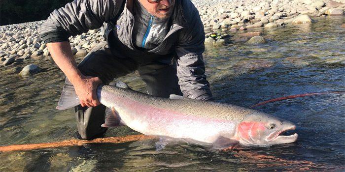 Tipos de peces de la pesca en Canadá