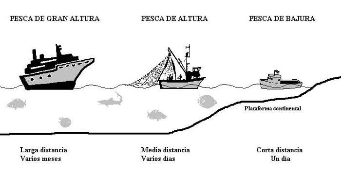 Tipos de pesca comercial industrial