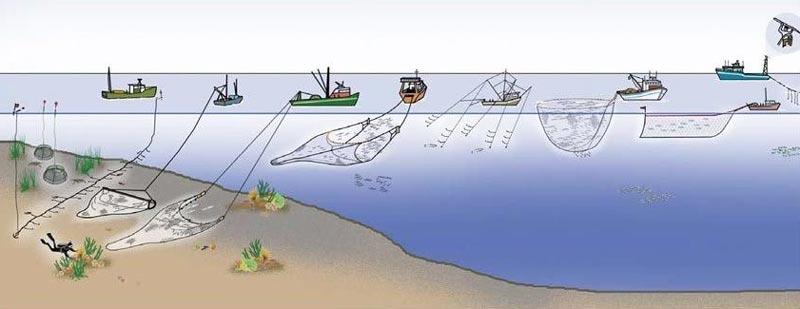Todos los tipos de redes de pesca