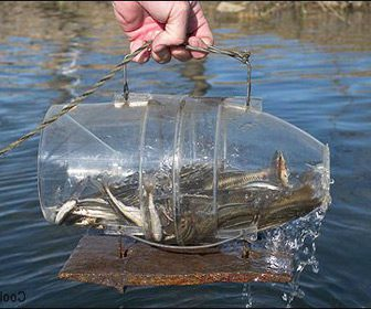 Trampas de pesca casera