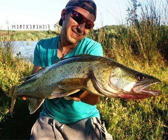 Trucos consejos pescar luciopercas