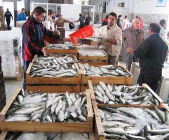 Venta de pescado en la Lonja