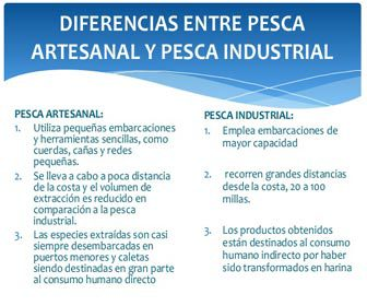 Diferencias pesca tradicional y pesca industrial