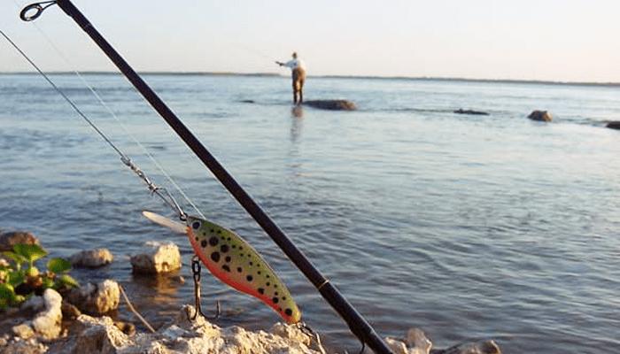 Las canciones de los tiempos la pesca